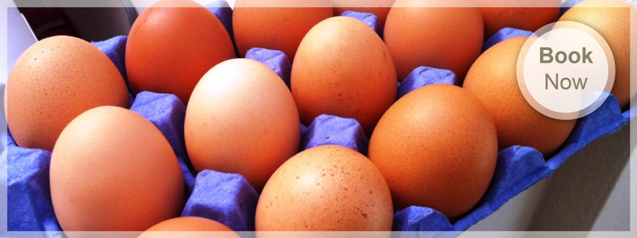 Wonderful Isle of Wight free range eggs served at The Caledon Guest House, Bed and Breakfast in Cowes Isle of Wight
